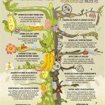 Agriculura tradicional vs OGM (GMO)
