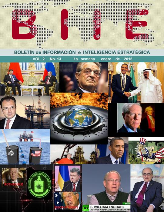 BIIE Vol.02 No.13 - Enero 2015 Primera Semana