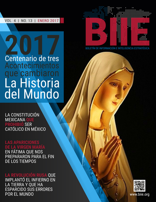 BIIE Vol.04 No.13 - Enero 2017 Primera Quincena