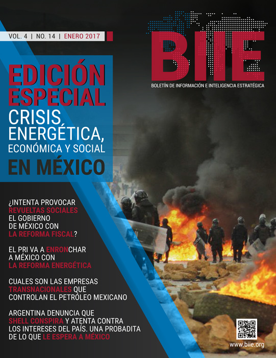 BIIE Vol.04 No.14 - Enero 2017 Segunda Quincena