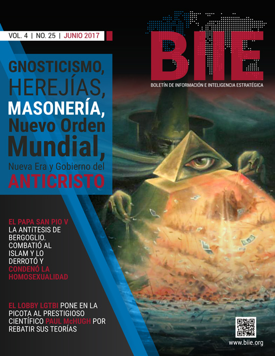 BIIE Vol.04 No.25 - Junio 2017 Segunda Quincena