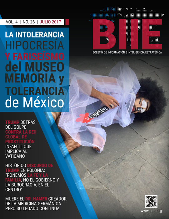 BIIE Vol.04 No.26 - Julio 2017 Primera Quincena