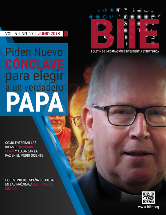 BIIE Vol.05 No.17 - Junio 2018 Primera Quincena