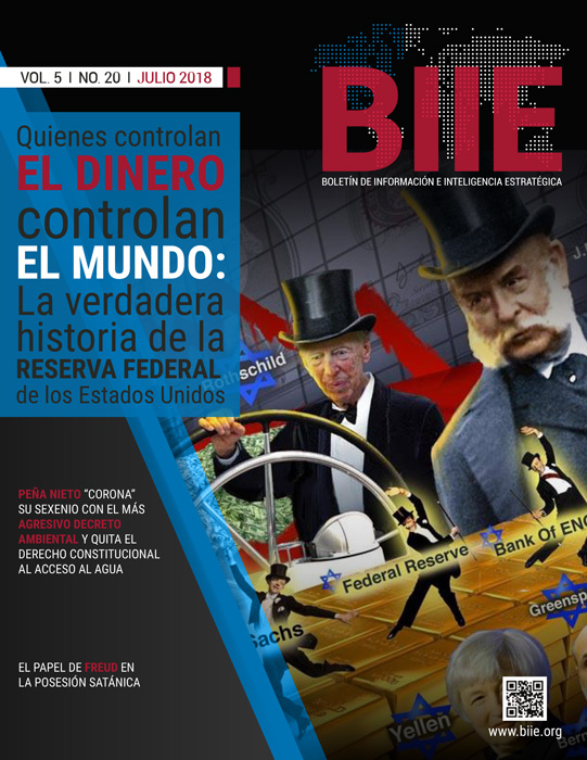 BIIE Vol.05 No.20 - Julio 2018 Segunda Quincena