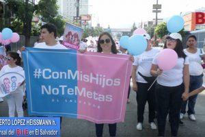 Informe especial sobre concentración provida en El Salvador, Noviembre 2018