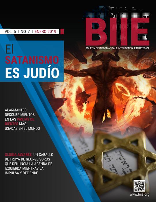 BIIE Vol.06 No.07 - Enero 2019 Primera Quincena