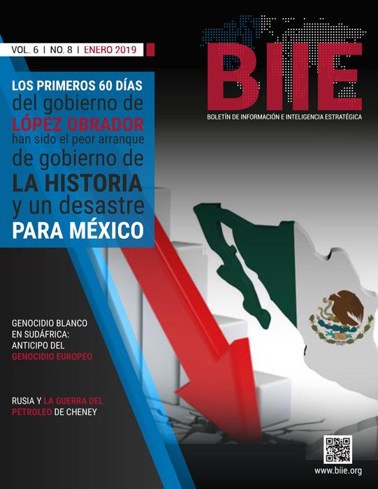 BIIE Vol.06 No.08 - Enero 2019 Segunda Quincena
