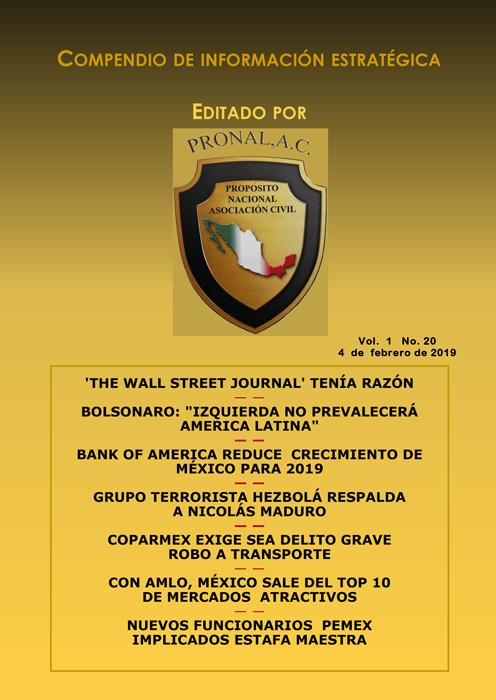 Compendio de Información Estratégica Vol.01 No.20 – 04 de Febrero de 2019