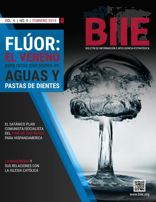 BIIE Vol.06 No.09 – Febrero 2019 Primera Quincena