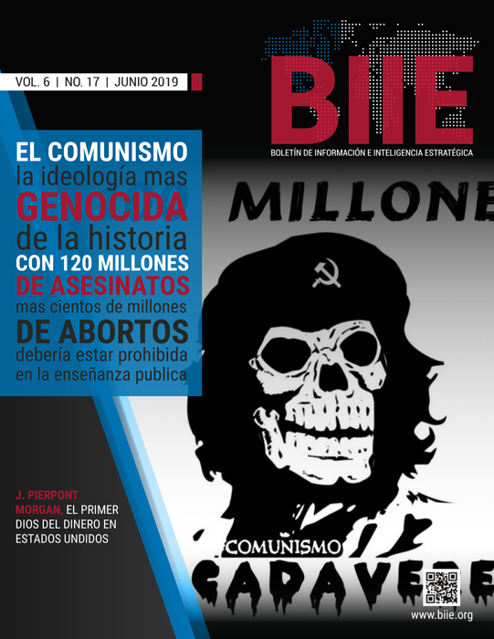 BIIE Vol.06 No.17 – Junio 2019 Primera Quincena