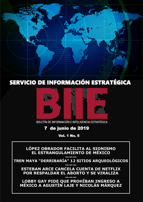 Servicio de Información Estratégica Vol.01 No.05 – 07 de Junio de 2019