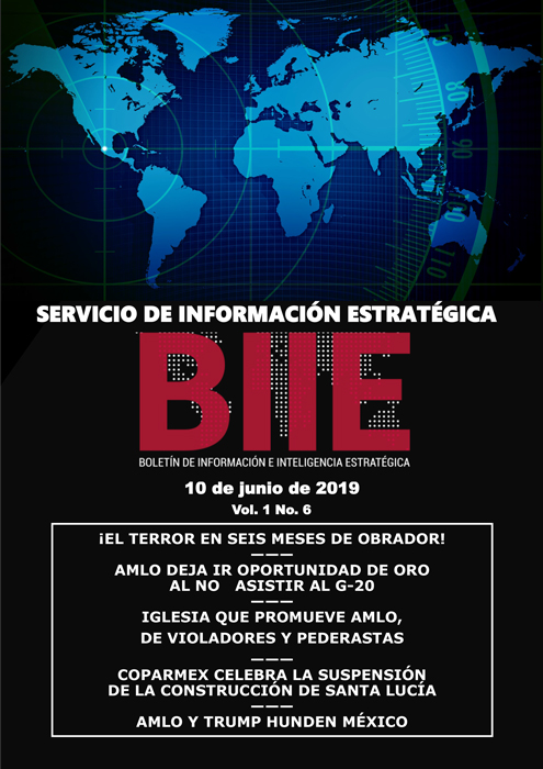 Servicio de Información Estratégica Vol.01 No.06 - 10 de Junio de 2019