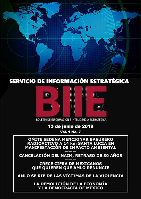 Servicio de Información Estratégica Vol.01 No.07 – 13 de Junio de 2019