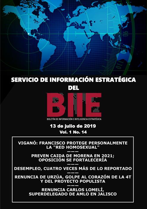 Servicio de Información Estratégica Vol.01 No.14 – 13 de Julio de 2019