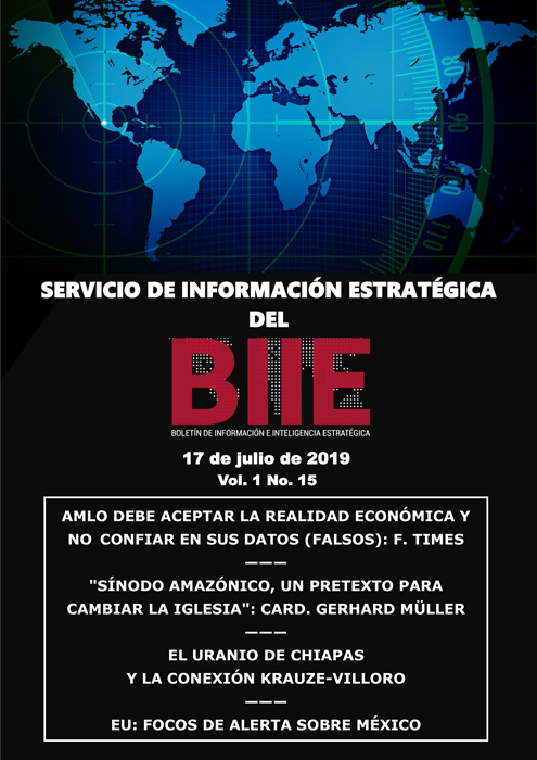 Servicio de Información Estratégica Vol.01 No.15 – 17 de Julio de 2019