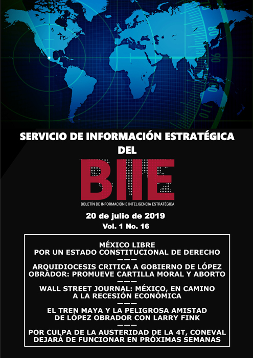 Servicio de Información Estratégica Vol.01 No.16 - 20 de Julio de 2019