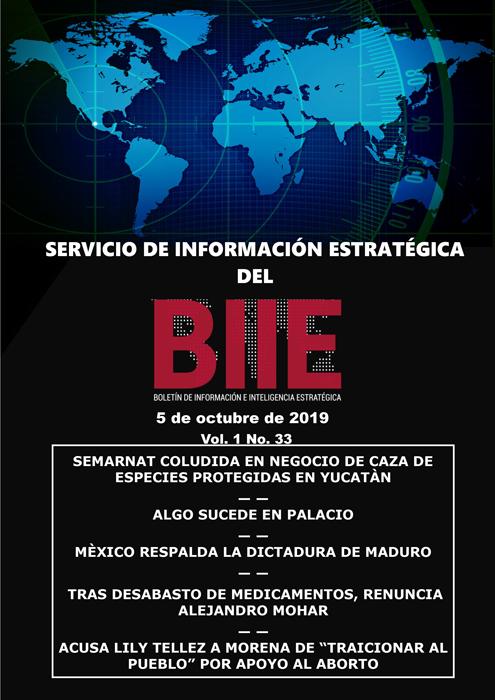 Servicio de Información Estratégica Vol.01 No.33 - 05 de Octubre de 2019