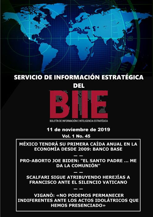Servicio de Información Estratégica Vol.01 No.45 – 11 de Noviembre de 2019