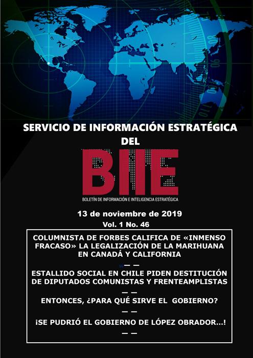 Servicio de Información Estratégica Vol.01 No.46 – 13 de Noviembre de 2019