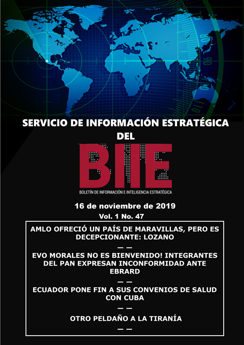 Servicio de Información Estratégica Vol.01 No.47 – 16 de Noviembre de 2019