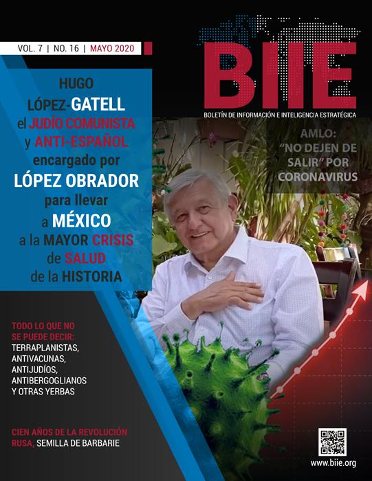 BIIE Vol.07 No.16 – Mayo 2020 Segunda Quincena