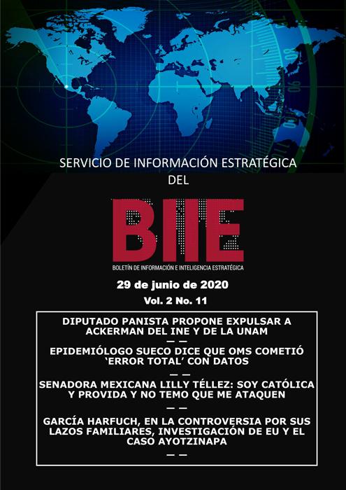 Servicio de Información Estratégica Vol.02 No.11 – 29 de Junio de 2020