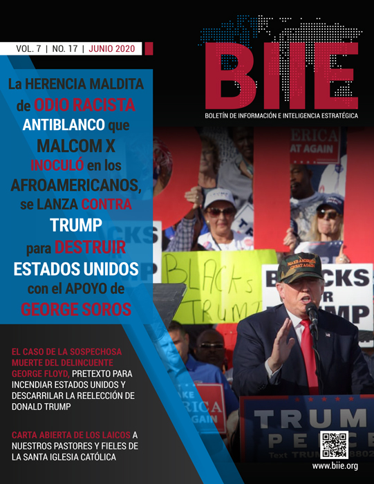 BIIE Vol.07 No.17 – Junio 2020 Primera Quincena