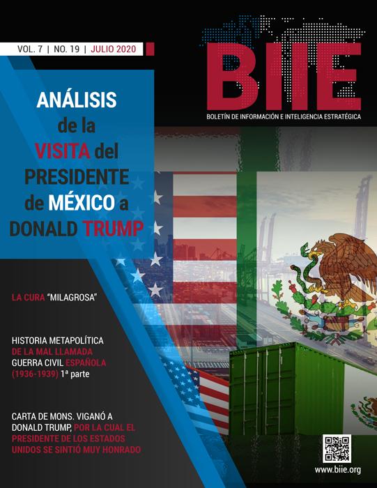 BIIE Vol.07 No.19 - Julio 2020 Primera Quincena