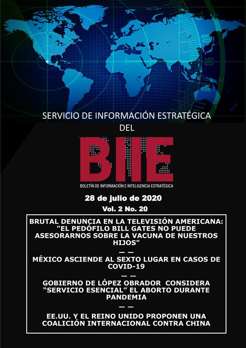 Servicio de Información Estratégica Vol.02 No.20 - 28 de Julio de 2020