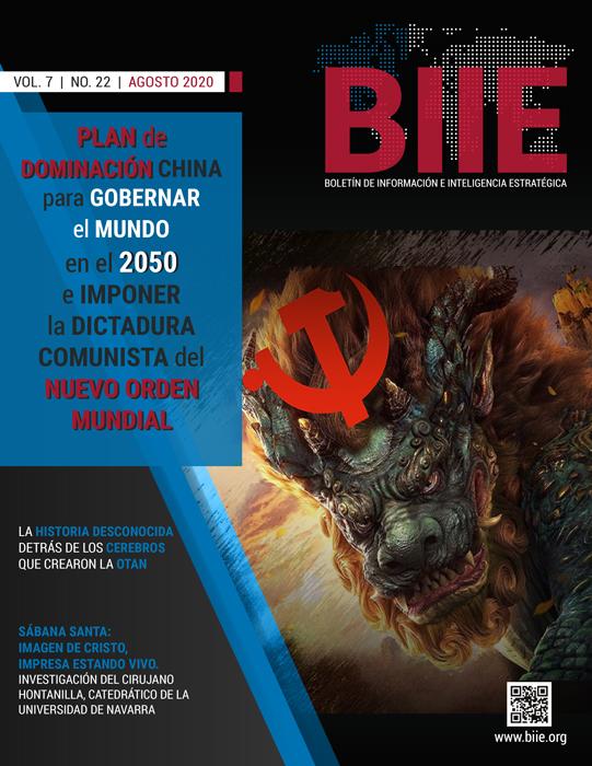 BIIE Vol.07 No.22 - Agosto 2020 Segunda Quincena