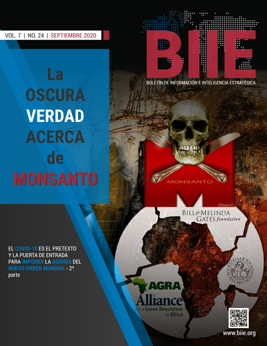 BIIE Vol.07 No.24 - Septiembre 2020 Segunda Quincena