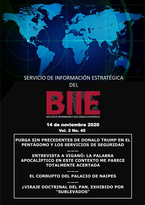 Servicio de Información Estratégica Vol.02 No.45 - 14 de Noviembre de 2020